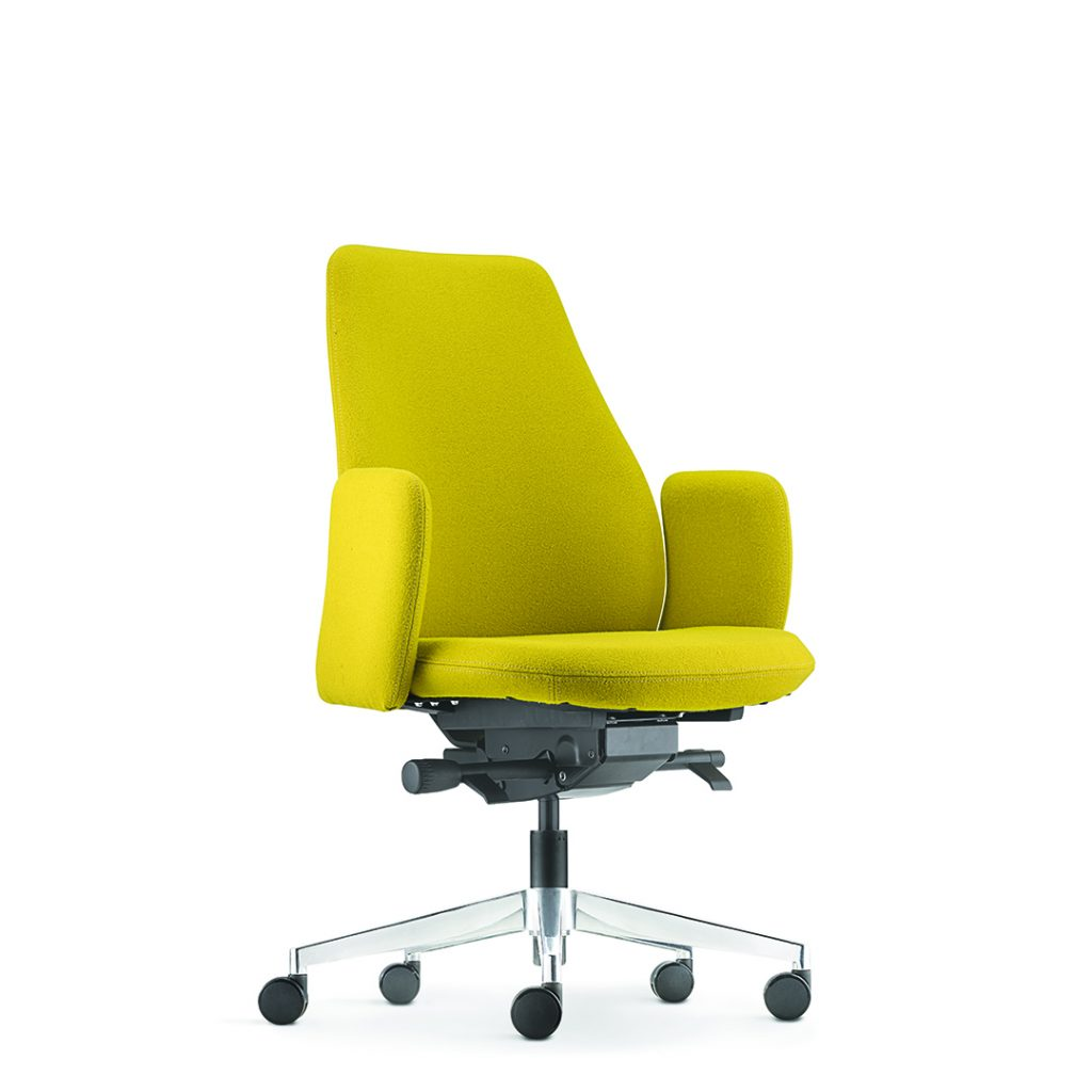 Eve Office Task Chair